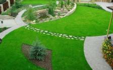 О стоимости газона для дачи