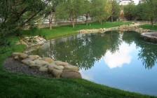 Создание искусственных водоемов