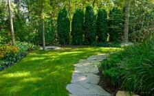 Выбор кустарников для организации живой изгороди