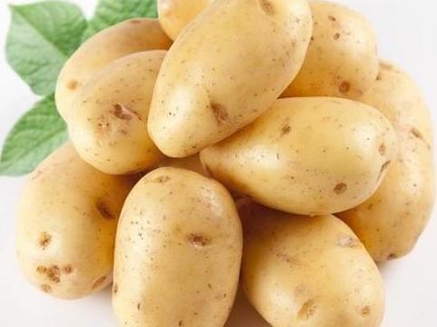 Картофель из семян: тонкости выращивания