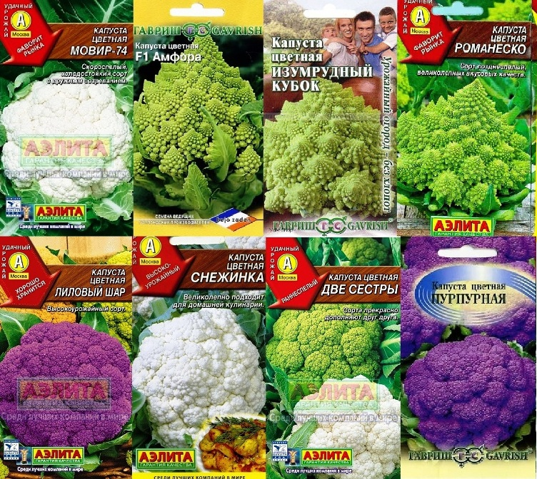 Семена цветной капусты