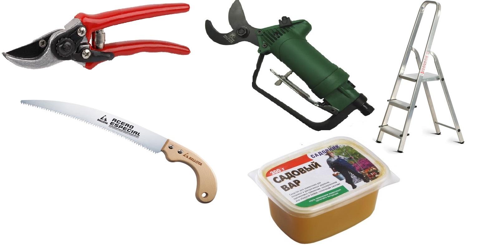 Садовый инструмент для обрезки плодовых деревьев