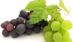 Как ухаживать за виноградом весной