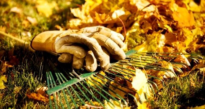 Осенние заботы садовода-огородника