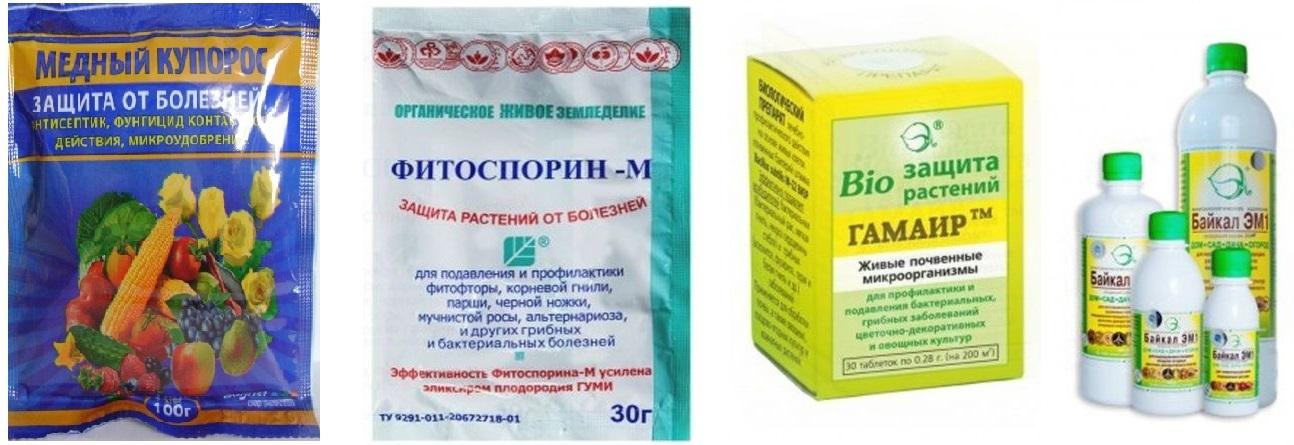 Препараты для профилактики и борьбы с фитофторой