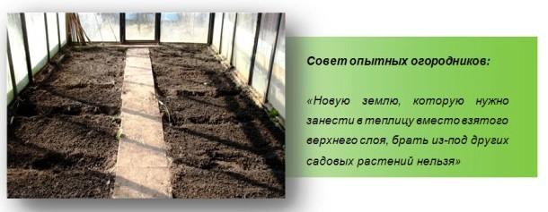 Готовим теплицу к зиме: меняем верхний слой земли